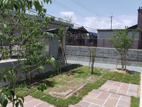 IMGA0290 (2)