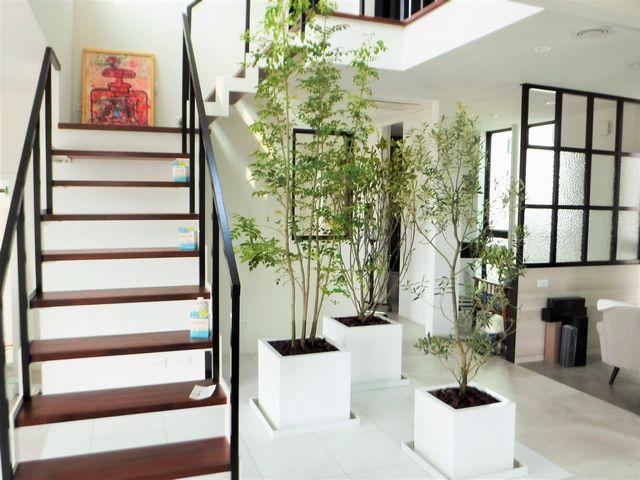 鶴岡市の「Gardenia & SPA」のインドアガーデン