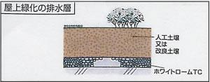 屋上緑化の排水層